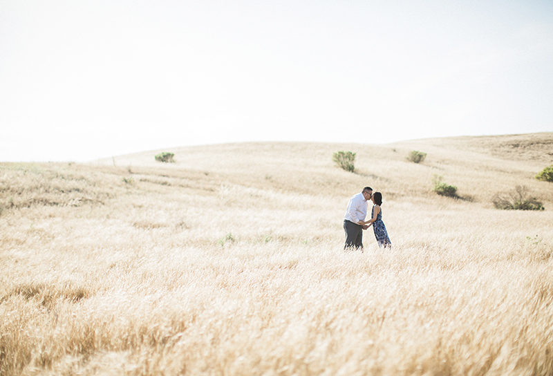 Riley-Wilderness-Park-Engagement-Photos-001